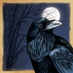 Crow Season – 11x14 matted print by Alex Wijnen