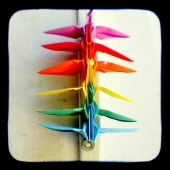 Rainbow Peace Cranes - TtV Photo Print by Hey Harriet