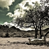 Desert Couch - Will Dyde Photo Art
