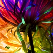 Abstract Flower Photograph