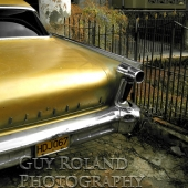 Havana Car in Gold