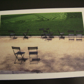 new york city public library park eco-friendly postcard