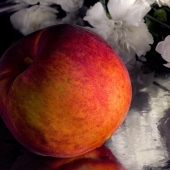 Peach with White Flowers