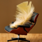 feather in eames lounge chair