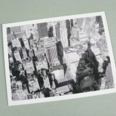 empire state-eco friendly postcard