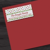 60 Polka Dotted Chic Return Address Labels, Thank You Stickers, Holiday Labels