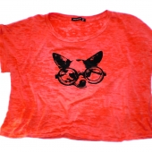Dog Geek Glasses Alternative Apparel burnout tshirt